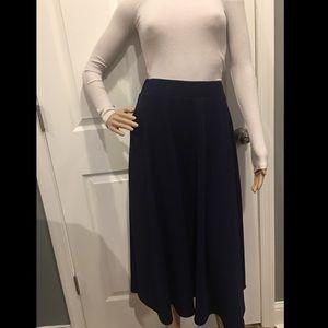 Navy blue A-line Skirt